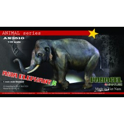 ASIA Elephant  A ( FEMALE VERSION)