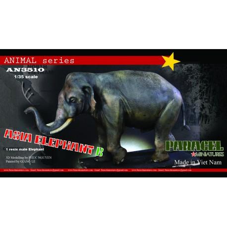 ASIA Elephant  A ( FEMALE VERSION)