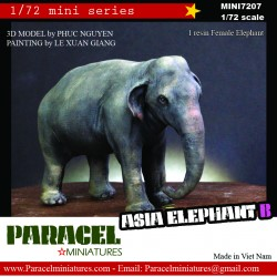 !/72 ASIA ELEPHANT B (FEMALE)