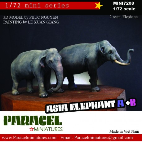 !/72 ASIA ELEPHANT B (FEMALE)